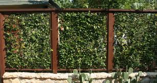 pergola awesome garden fencing exterior unique leaves pattern