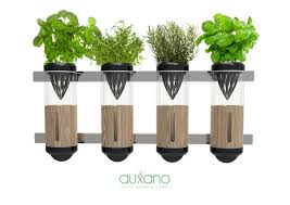 Diy Self Watering Herb Garden Auxano Hydroponic Vegetable And Herb Grower By Philip Houiellebecq
