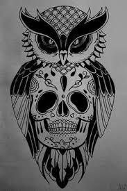 owl skull suche tattoos that i