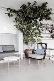 Large Indoor Plants 285 Best Gubi In Public Places Images On Pinterest Public