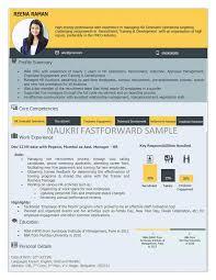 visual resume template gfyork com