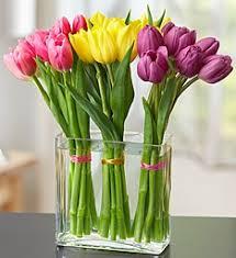 florist gainesville fl gainesville florist gainesville fl flower shop prange s florist
