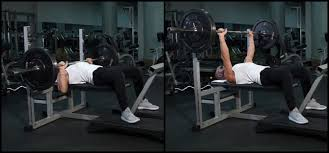 Stronger Bench Stronger Bench Best Benches