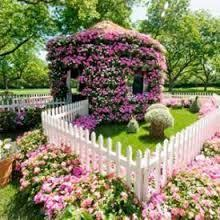 flower house flower house pictures photos and images for