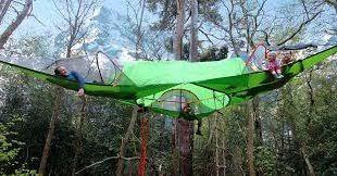 tree tents hammocks camping shelter tensile tentsile 21