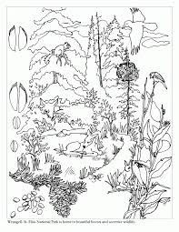 biomes coloring pages acqb7rjdi biomes coloring pages s