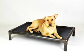 Kong Dog Beds Bedroom Enchanting Some Top Designs And Products Chew Proof Dog