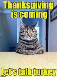 Thanksgiving Cat Meme - take a seat cat memes imgflip