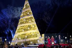 christmas tree lighting near me trump lights the national christmas tree