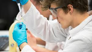 microbiology undergraduate degrees study here the university
