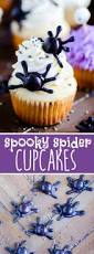best 25 spider cupcakes ideas on pinterest spider cookies