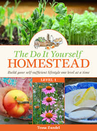 the do it yourself homestead homestead lady
