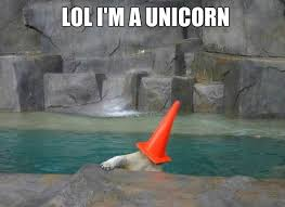 Bear Memes - meme unicorn polar bear imglulz