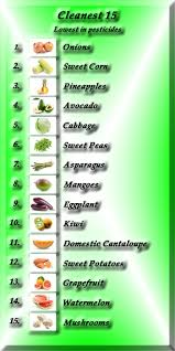 A List Of Root Vegetables - list of root vegetable 10 best root vegetables project images on