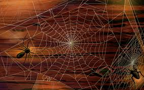creepy halloween backgrounds spider wallpaper wallpapersafari
