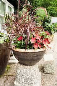 decoration avec des pots en terre cuite fleurs en pot conseils et idées pour enjoliver le jardin
