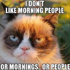 Grumpy Cat Coma Meme - luxury grumpy cat coma meme grumpy cat meme deutsch womenweb