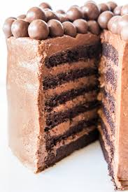 double layer chocolate sponge cake recipe photo recipes