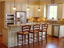 interior amazing kitchen design houzz luxury home design