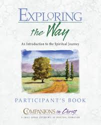 the way of transforming discipleship participant u0027s book print book