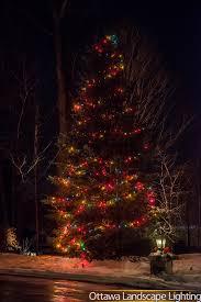 christmas lighting decor ottawa landscape lighting