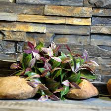online get cheap large artificial plants aliexpress com alibaba