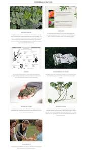 92 best herbal academy coupons images on pinterest herbal herbal academy of new england promo code