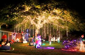 christmas lights best in west palm beach jupiter lake worth