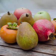 Fruit Delivery Gifts Best Selling Products Organic Fresh Fruit U2013 Frog Hollow Farm