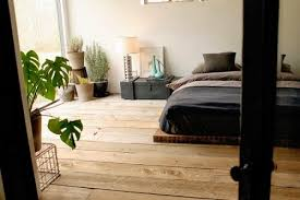 une plante dans une chambre crea vegetal les plantes dans une chambre