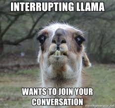 Llama Meme - interrupting llama wants to join your conversation surprise