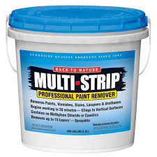 multi strip 1 gal multiple layer paint and varnish remover ms01
