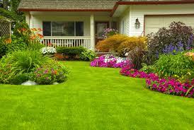 fresh minimalist garden landscape with colorful flower decor