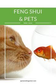 Feng Shui Feng Shui And Pets Gwynne Warner