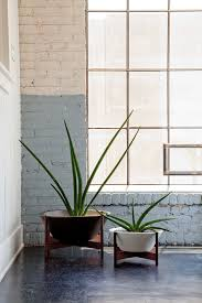 modernica case study wok with wood stand ceramic planter