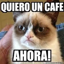 Cafe Meme - meme grumpy cat quiero un cafe ahora 6632354