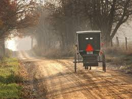 Photo of amish horse and buggy near topeka indiana cultural