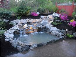 Backyard Duck Ponds Backyards Chic 16 Making A Small Pond For Ducks Impressive