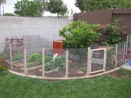 best 25 small garden fence ideas chicken wire ideas on pinterest