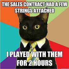 Business Cat Memes - the best of the business cat meme