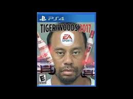 Dui Meme - the best memes of tiger woods dui 2017 less than 1 minute