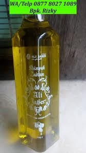 Minyak Zaitun Untuk Memanjangkan Rambut minyak zaitun untuk rambut anak wa telp 0877 8027 1089