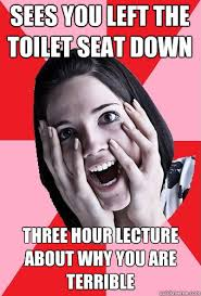 Toilet Seat Down Meme - sees you left the toilet seat down three hour lecture about why