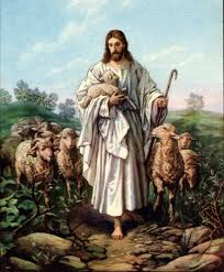 Jesus Christ Is The Good Shepherd Of His Sheep St Timothy