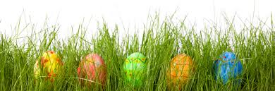 Easter Decorations For Cemetery by Decorating Easter Eggs Archives Luma Comfortluma Comfort