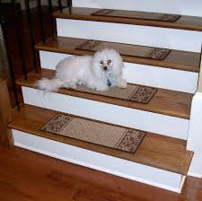 carpet stair treads caramel scroll border dean flooring