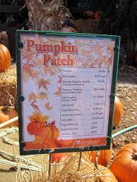 halloween shopping merrifield garden center autumn in virginia
