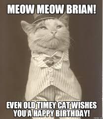 Happy Birthday Cat Memes - happy birthday meme of cat free available