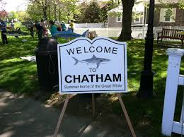 chatham merchants association u201csharks in the park u201d chatham whites