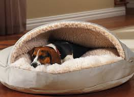 Petco Cat Beds Donut Bed For Dog Cat Beds Heated Luxury Outdoor Petco At Walmart